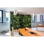 Медиите за нас: Интер Пауър предлага биодинамично осветление